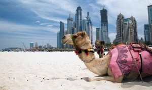 Locuri de munca in Dubai 2015